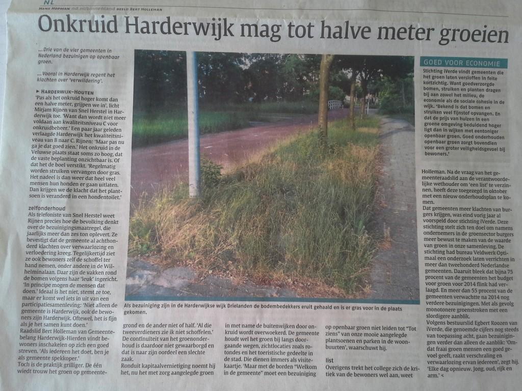 artikel-ND'-onkruid-Harderwijk