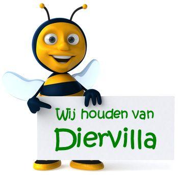 Bij-Diervilla-xx