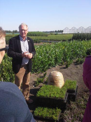 Dick de Bruijn verteld over de kweek van drachtplant Calluna vulgaris (wilde heide)